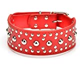 Pet Kingdom 18-24'' Leather Studded Large Dog Collar 4 Colors 3 Size Pet Collar (Red, Large)