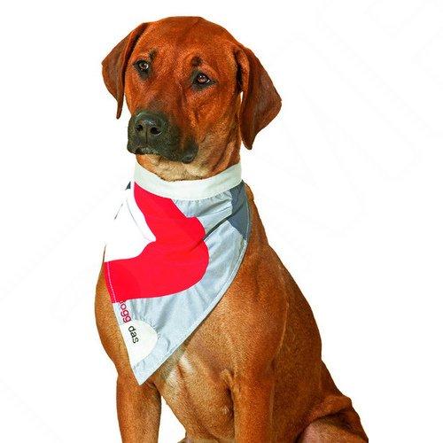 Artikelbild: Karlie doggidas Safety Dog Halstuch rot/grau, Größe: M