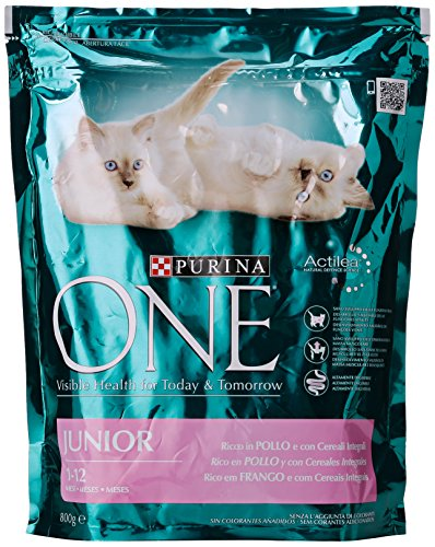 Purina One Junior Pollo/Riso Gr.800