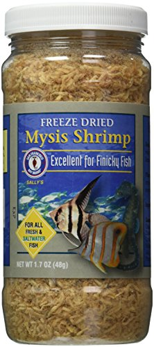 San Francisco Bay Brand ASF71720 Freeze Dried Mysis Shrimp for Fresh and Saltwater Fish, 48gm