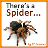 Theres a Spider... (Animal Rhyming Books For Children Book 4)