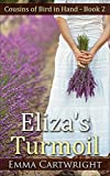 Amish Romance: Eliza's Turmoil: Short Amish Romance Story (Cousins of Bird in Hand Series Book 2)