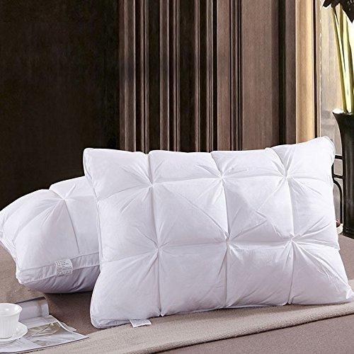 cotton-pane-morbido-fluffy-cuscino-di-piume-di-down