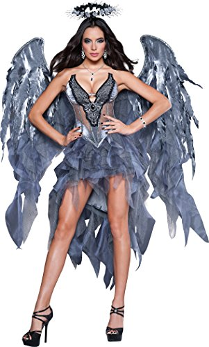 Dark Angel's Desire Costume