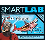 You Build It Shark Model (Smart Lab) David George Gordon and Don Roff