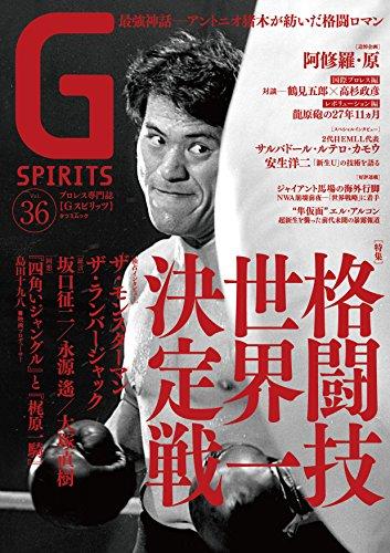 Gスピリッツ Vol.36 (タツミムック)