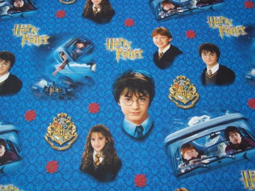 2 Rolls of HARRY POTTER MOVIE ROLL GIFT WRAP WRAPPING PAPER