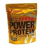 健康体力研究所 パワープロテイン デリシャスタイプ ココア風味 1kg