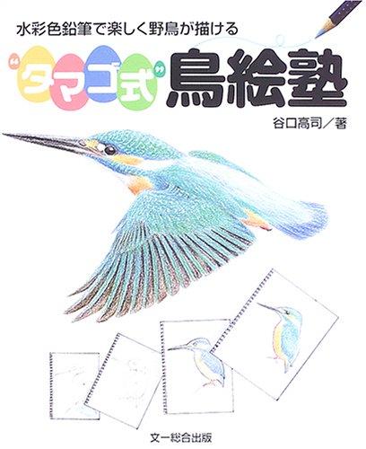 """""""タマゴ式""""鳥絵塾―水彩色鉛筆で楽しく野鳥が描ける"""