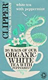 Clipper Organic White Tea with Peppermint 26 Teabags (Pack of 6, Total 156 Teabags)