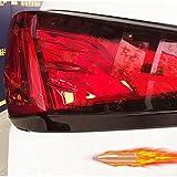 レクサス NX 200t 300h ブレットガーニッシュ LN014