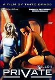 Private (FALLO, Director's Cut, Italian Version) (Bilingual) [Import]