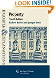 Examples & Explanations: Property, Fourth Edition