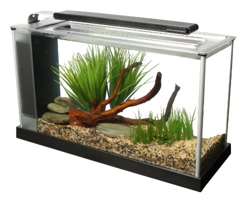 Fluval Spec V Aquarium Kit, 5-Gallon, Black (5 Gallon Fish Tank Starter Kit compare prices)