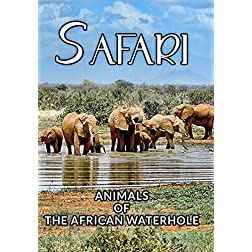 Safari The Animals Of The African Waterhole