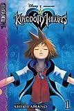 Kingdom Hearts: v. 1 (Kingdom Hearts) (Kingdom Hearts Junior Novels)