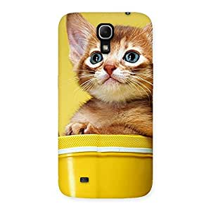 Ajay Enterprises Div Kitty Bucket Back Case Cover for Galaxy Mega 6.3
