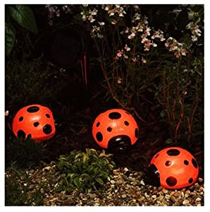 Solar ladybird lights
