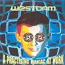A Practising Maniac At Work [Vinyl LP]