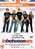 The Inbetweeners [DVD] [2001]