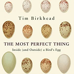 The Most Perfect Thing Audiobook