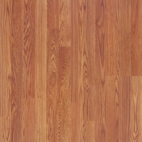 Pergo RM000449 Accolade Laminate Flooring Sample, 16-Inches by 7.6-Inches, Pembrook Oak
