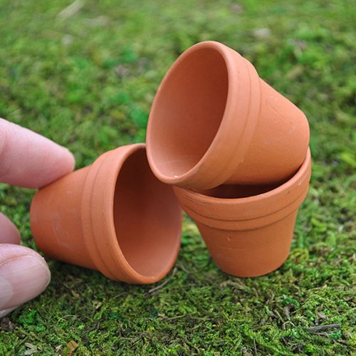 Terra Cotta Pots Set of 3