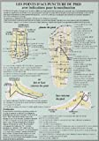 Points d'Acupuncture du Pied - Planche A4