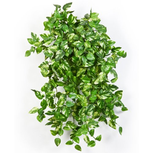 mini-arbusto-enredadera-pothos-artificial-con-560-hojas-verde-amarillo-55-cm-pequena-planta-decorati