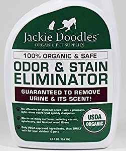 Odor & Stain Remover, Amazon's #1 Hot New Release, 100% Organic, No Smell or Chemicals -Urine Gone- GUARANTEED TO WORK- best for carpets, furniture, tile, hardwood floors, cages and litter boxes