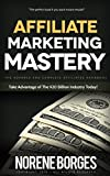 Affiliate Marketing Mastery: Take Advantage of The $20 Billion Industry Today!