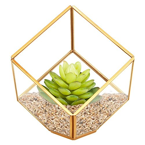 HOMEIDEAS Clear Glass Metal Faceted Decorative Box / Plant Terrarium Display / Air Plant & Cacti Holder Case 4.3 x 4.3 x 4.3 Inches(golden) (Pyramid Glass Display Case compare prices)