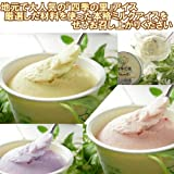 福島県産 地元で人気の 濃厚フレッシュミルクの 四季の里アイス 10種類のフレーバー 2種類選択