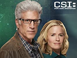 CSI: Crime Scene Investigation, Season 14
