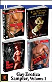 img - for Gay Erotica Volume 1: Black Fire, In Plain View, The Company He Keeps, Rough Trade book / textbook / text book