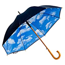 Elite Rain Umbrella Auto Open Wooden Shaft Umbrella - Perfect Day