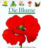 Die Blume - Rene Mettler, Claude Delafosse
