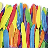 Duck Quill Feathers, 3-oz. Pack, 96 Pieces per pack