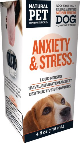 Vitamins for Anxiety