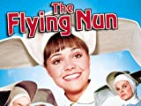 The Flying Nun: With A Friend Like Him, Who Needs?