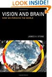 Vision and Brain: How We Perceive the World