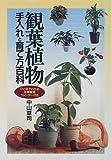 観葉植物―手入れと育て方百科