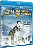 Image de Faszination Schlittenhunde 3d - das Große Rennen [Blu-ray] [Import allemand]