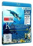 Image de Faszination Korallenriff 3d [Blu-ray] [Import allemand]