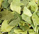 Dried Kaffir Lime Leaves Herbs Spices for Thai Food Recipe, Tom Yum Soup, Curry 50 g (exclude package)+Free Shipping World Wide