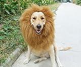 Sunreek™Large Pet Dog Cat Lion Wigs Mane Hair Festival Party Fancy Dress Clothes Costume