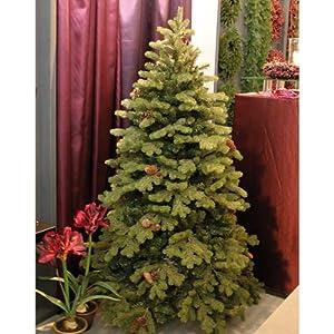 edler tannenbaum konrad mit tannenzapfen 255cm 180cm k nstlicher weihnachtsbaum. Black Bedroom Furniture Sets. Home Design Ideas