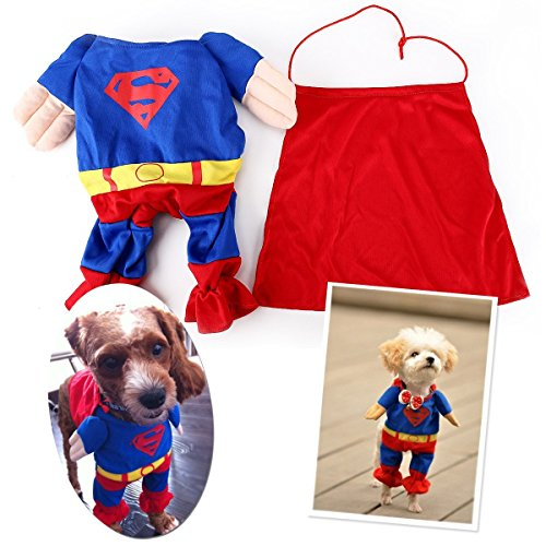 eqlefr-superman-dog-cat-puppy-halloween-costume-abbigliamento-pet-abbigliamento-superdog-dress-up-pe