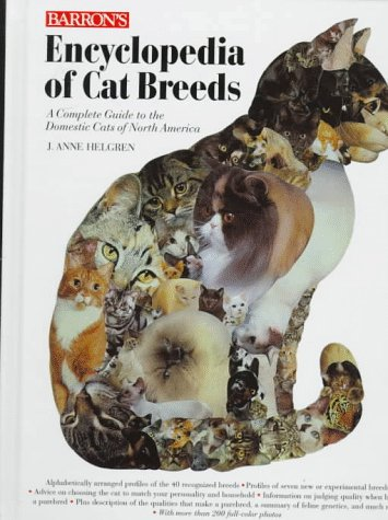 Common Cat Breeds Average Common Stockholders Equity