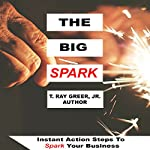 The Big Spark: Instant Action Steps to Spark Your Business | T. Ray Greer Jr.